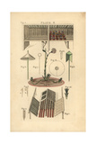 Gardening Tools and Equipment, Circa 1800 Giclee Print
