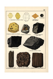 Mineral Varieties Including Sulphur, Mellite, Amber and Coal Giclee Print