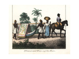 Brazilian Planter on Horseback and His Wife in Litter Carried by Slaves Giclee Print