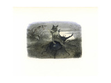 The Fairy Queen's Messenger Riding on a Stag Beetle Giclee Print by Richard Doyle