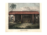 Slaves Bringing Sugar Cane to a Sugar Mill on a Plantation in Brazil Giclee Print