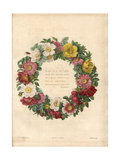Decorative Wreath of Roses Giclee Print by Pierre-Joseph Redouté