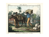 Brazilian Slaves Loading a Horse for a Journey Giclee Print