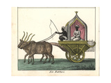 Indian Festival Carriage Driven by Bulls Giclee Print