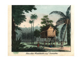Raised Wooden House in Tropical Jungle, Sumatra, Indonesia, 1800 Giclee Print