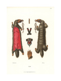 German Women's Jewelry from 1546 Giclee Print by Jakob Heinrich Hefner-Alteneck