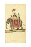 Indian Nobleman on a Palanquin on an Elephant Giclee Print