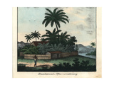 Brazilian Planter's House with Palm Trees on a River Bank Giclee Print