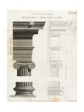 Ionic Column from the Temple of Minerva Polias at Priene Giclee Print by Wilson Lowry