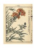 Mexican Marigold, Tagetes Erecta Giclee Print by Bairei Kono
