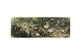 Water Lilies and Water Fairies of the Period Giclee Print by Richard Doyle