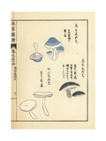 Akashimeji, Aoshimeji and Yabushimeji Mushrooms Giclee Print by Kan'en Iwasaki