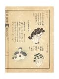 Numeri Mushroom, Hadomotase, and Miyamashimeji Giclée-Druck von Kan'en Iwasaki