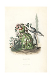 Hawthorn Flower Fairy and Children, Crataegus Laevigata Giclee Print by Jean Ignace Grandville