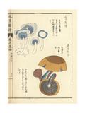 Kuritake and Anutake Mushroom, Boletus Luteus Giclée-Druck von Kan'en Iwasaki