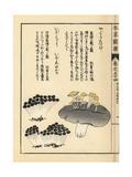 Yaguretake and Ibomiri Mushrooms Giclée-Druck von Kan'en Iwasaki