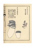 Zenbon Shimeji Mushrooms Giclee Print by Kan'en Iwasaki