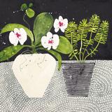 Orchid Mosaic II Impression giclée par Susan Brown