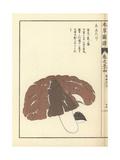 Anutake Mushroom Giclee Print by Kan'en Iwasaki