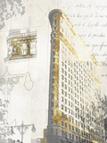 Flatiron Prints by Ben James