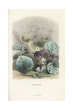 Violet, Viola Odorata, Flower Fairies Kneeling Giclee Print by Jean Ignace Grandville