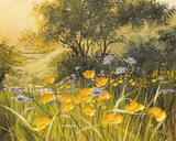 Golden Sunset Giclee Print by Mary Dipnall