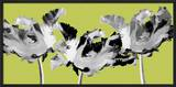 Limelight I Framed Giclee Print by Linda Wood