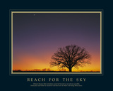 Reach For The Sky Giclee Print by Adam Brock