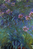 Claude Monet Jewelry Lilies Poster Posters