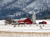 Winter Farm Giclee Print by Bill Coleman