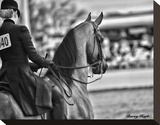 And the Winner Is Stretched Canvas Print by Barry Hart