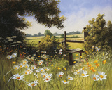 On the Footpath Giclee Print by Mary Dipnall