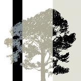 Oak Stripe Giclee Print by Sarah Cheyne