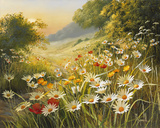 Evening Sun Giclee Print by Mary Dipnall