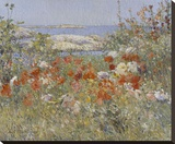 Celia Thaxter's Garden, Isles of Shoals, Maine, 1890 Stretched Canvas Print by Childe Hassam