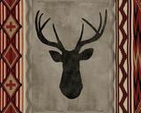 Navajo I Giclee Print by Tania Bello