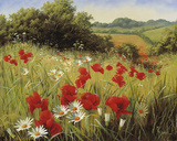 Sunlit Meadow Giclee Print by Mary Dipnall