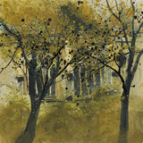 Seasonal Trees IV Giclee Print by Susan Brown