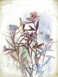 Flower Mist II Giclee Print by Ken Hurd