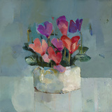 Pretty Pot of Cyclamen Giclee Print by Sarah Simpson