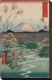 The Coast at Hota, from the series Thirty-six Views of Mount Fuji, 1858 Stretched Canvas Print by Ando Hiroshige