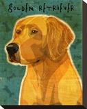 Golden Retriever Stretched Canvas Print by John Golden