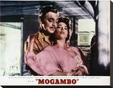 Mogambo Stretched Canvas Print