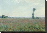 Poppy Field, 1881 Trykk på strukket lerret av Claude Monet