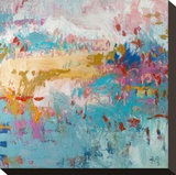 Playful Spirit Stretched Canvas Print by Amy Donaldson