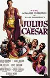 Julius Caesar Stretched Canvas Print