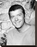Robert Reed - The Brady Bunch Stretched Canvas Print