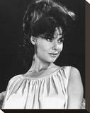 Anne Heywood Stretched Canvas Print