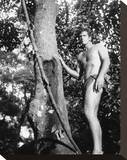 Ron Ely - Tarzan Stretched Canvas Print