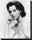 Claire Bloom - The Chapman Report Stretched Canvas Print